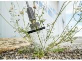 Приспособление для уничтожения сорняков Karcher WR 10